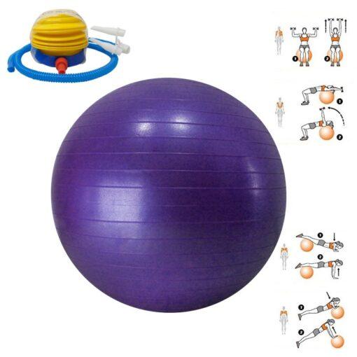 Balón de Gimnasia es un Producto Deportivo de la Tienda Deportes Regol